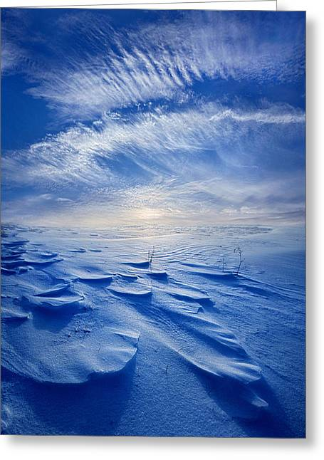 Angel Blues Greeting Cards - Winter Born Greeting Card by Phil Koch