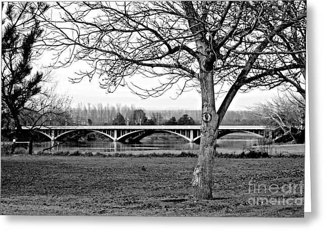 Winter Park Greeting Cards - Winter Bridge - Black and White Greeting Card by Carol Groenen