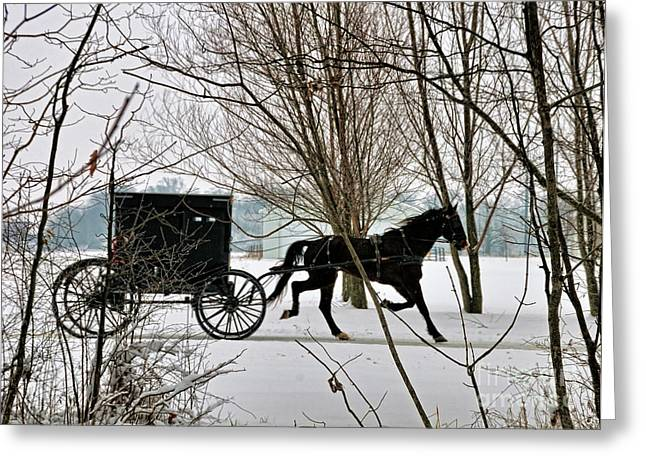 Indiana Winters Greeting Cards - Winter Buggy Greeting Card by David Arment