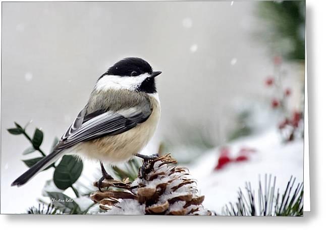 Chickadee Greeting Cards - Winter Chickadee Greeting Card by Christina Rollo