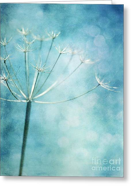 Close Up Floral Greeting Cards - Winter Colors Greeting Card by Priska Wettstein