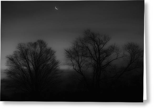 Winter Night Greeting Cards - Winter Crecent Moon Greeting Card by Bill  Wakeley