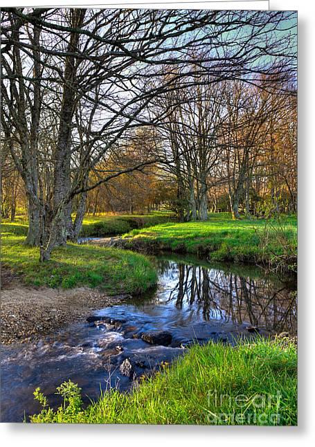 Creek Framed Prints Greeting Cards - Winter Creek - Blue Ridge Parkway I Greeting Card by Dan Carmichael