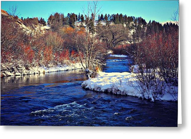 Lewistown Greeting Cards - Winter Creek Greeting Card by Corrie Knerr