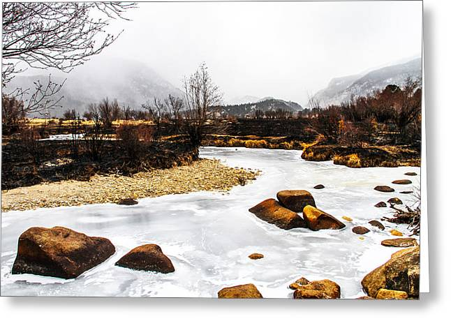 Rocky Mountain National Park Greeting Cards - Winter Creek Greeting Card by Juli Ellen