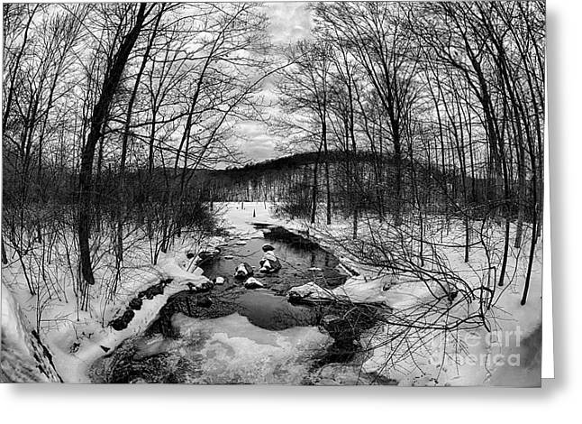 Winter Creek Greeting Card by Mark Miller