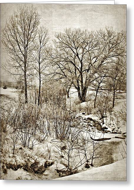 Brown Tones Greeting Cards - Winter Creek Greeting Card by Nikolyn McDonald