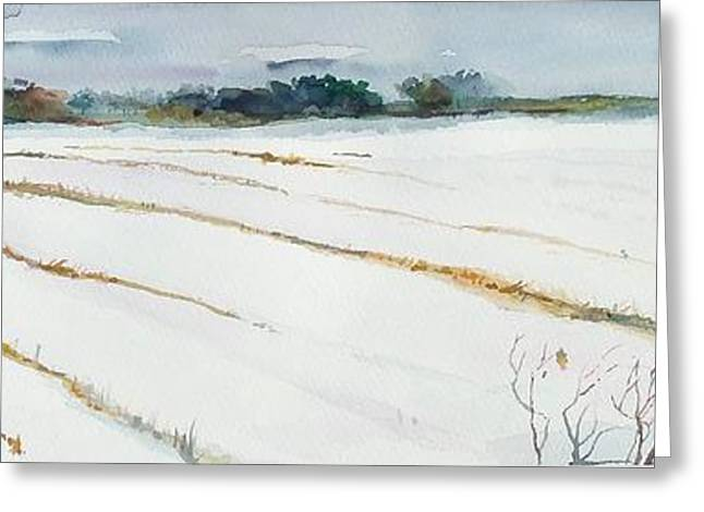 Scott Nelson And Son Paintings Greeting Cards - Winter Crop Greeting Card by Scott Nelson