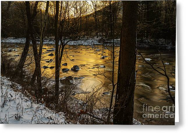Williams River Greeting Cards - Winter Dawn at Zero  Greeting Card by Thomas R Fletcher