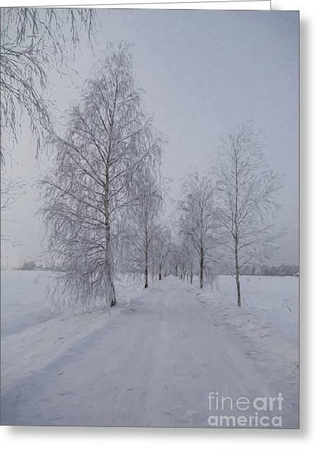 Winter Roads Greeting Cards - Winter day Greeting Card by Veikko Suikkanen