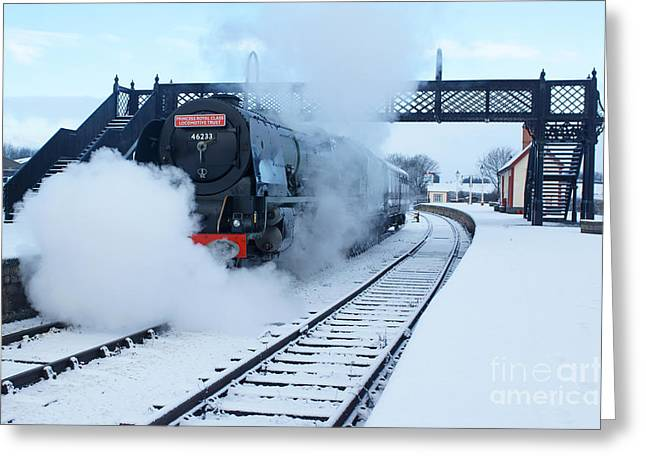 Duchess Greeting Cards - Winter Departure Greeting Card by David Birchall