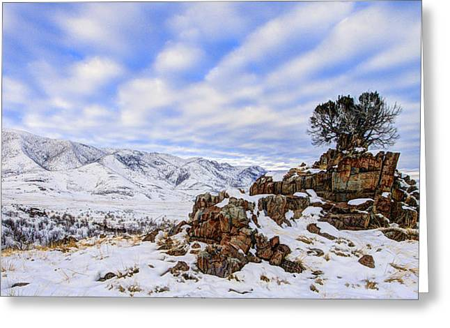 Blue Shadows Greeting Cards - Winter Desert Greeting Card by Chad Dutson
