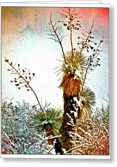 Las Cruces Digital Art Greeting Cards - Winter Desert Yucca Greeting Card by Barbara Chichester