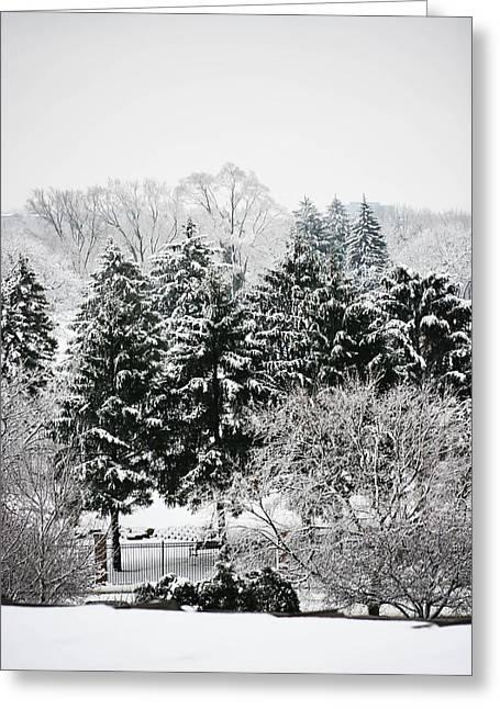 Allan Millora Greeting Cards - Winter Dream Greeting Card by Allan Millora