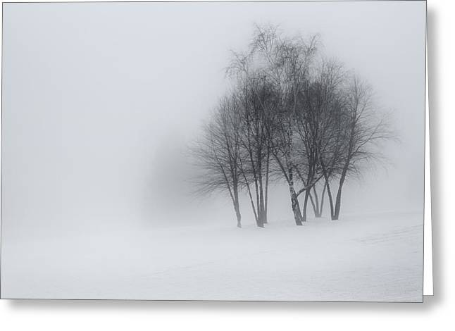 Minimalist Greeting Cards - Winter Dream Greeting Card by Bill  Wakeley