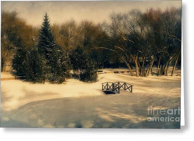 Winter Photos Greeting Cards - Winter Dream Greeting Card by Dorothy Pinder