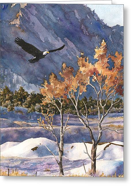 Bird On Tree Greeting Cards - Winter Drift Greeting Card by Anne Gifford