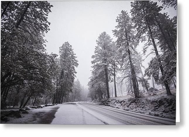 Winter Driven Greeting Card by Anthony Citro