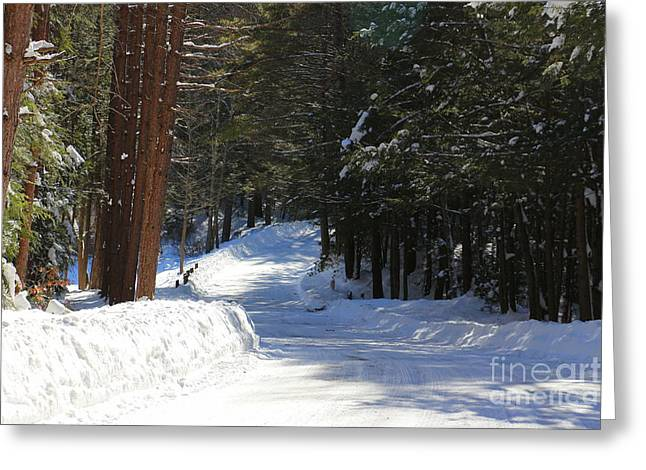 Bigelow Hollow Greeting Cards - Winter Escape  Greeting Card by Neal  Eslinger