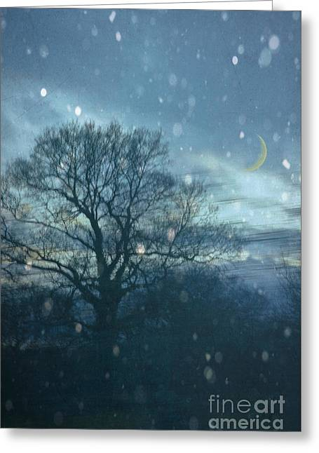 Wintry Greeting Cards - Winter Evening Greeting Card by Jan Bickerton