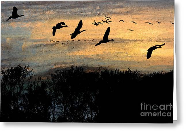 Hunting Bird Pastels Greeting Cards - Winter Excursion Greeting Card by R Kyllo