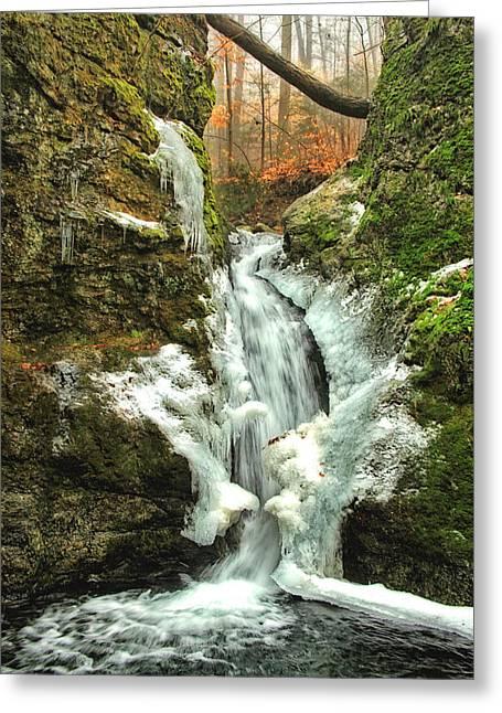 Shelton Greeting Cards - Winter Falls Greeting Card by Karol  Livote