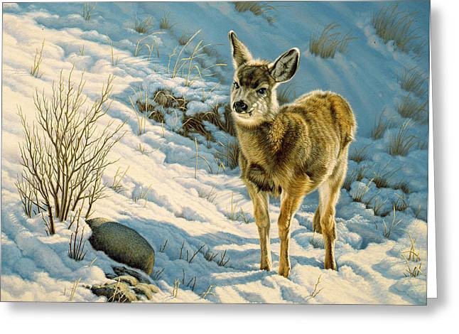 Mules Greeting Cards - Winter Fawn - Mule Deer Greeting Card by Paul Krapf