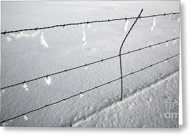 Michele Greeting Cards - Winter Fence Harney Oregon Greeting Card by Michele AnneLouise Machholz