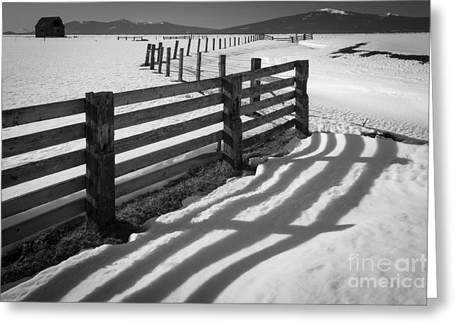 Shasta Greeting Cards - Winter Fence Greeting Card by Inge Johnsson