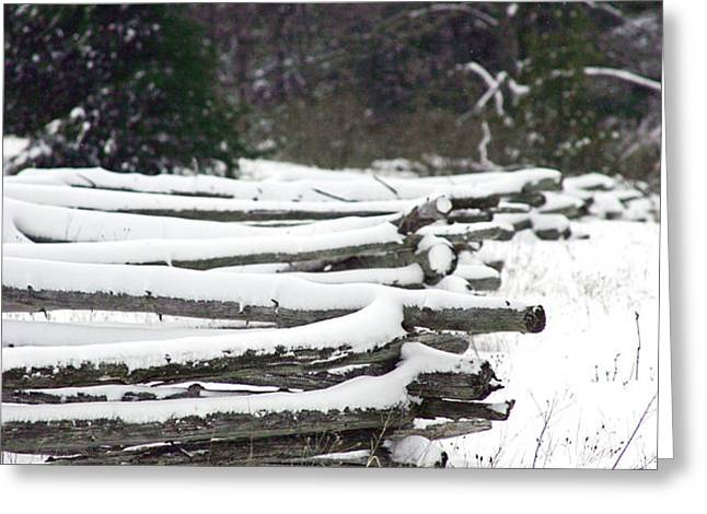 Winter Fence Greeting Card by Ty Helbach