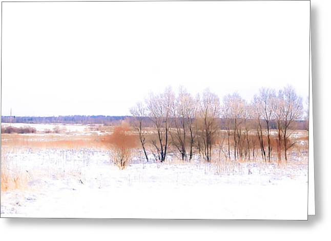 Snow Scene Landscape Greeting Cards - Winter Fields. In Color Greeting Card by Jenny Rainbow