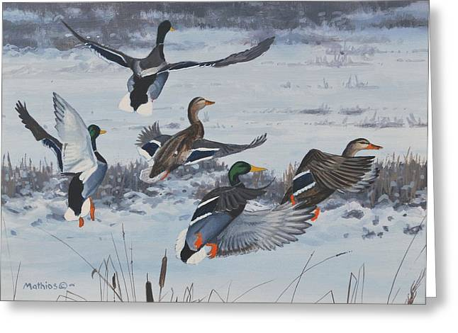 Peter Mathios Greeting Cards - Winter Flurry Greeting Card by Peter Mathios