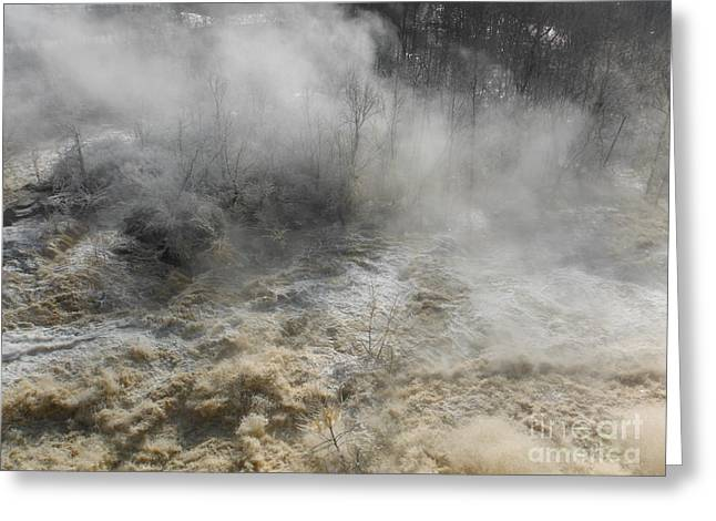 Concord. Winter Greeting Cards - Winter Fog And Flood Greeting Card by Paddy Shaffer