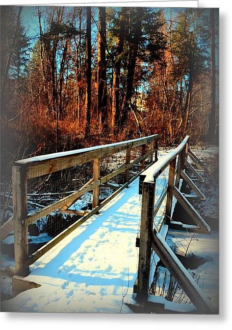 Naramata Greeting Cards - Winter Foot Bridge - Naramata BC 02-28-2014 Greeting Card by Guy Hoffman