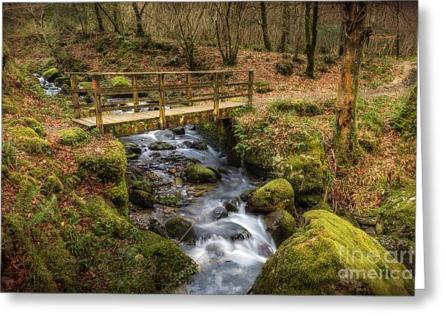 Autumnal Greeting Cards - Winter Footbridge Greeting Card by Adrian Evans