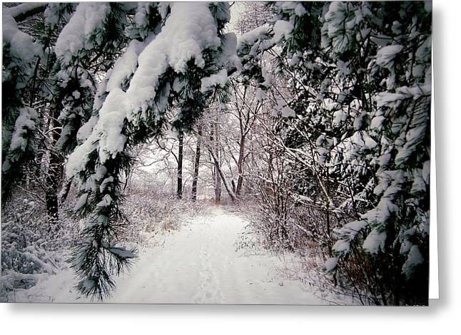 Road Covered With Snow Greeting Cards - Winter Footpath Greeting Card by Daniel Janda
