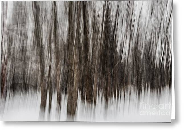 Snow Abstract Greeting Cards - Winter forest abstract Greeting Card by Elena Elisseeva