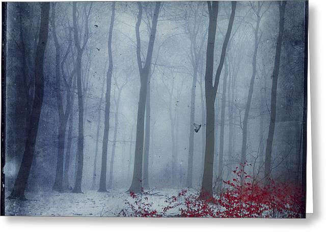 Dirk Wuestenhagen Greeting Cards - Winter Forest in Red and Blue Greeting Card by Dirk Wuestenhagen