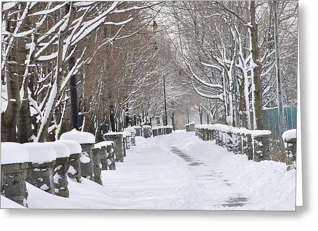 Frederico Borges Greeting Cards - Winter Greeting Card by Frederico Borges