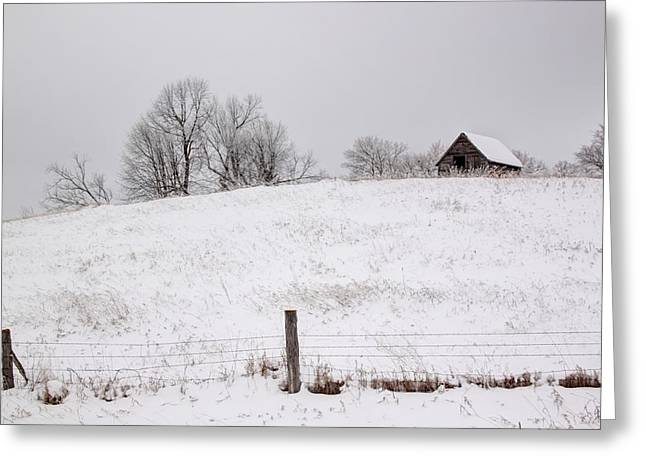 Snowy Day Greeting Cards - Winter Frost Greeting Card by Barb Gabay