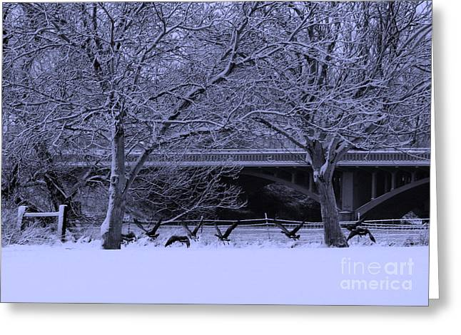 Winter Park Greeting Cards - Winter Geese Retreat Greeting Card by Carol Groenen