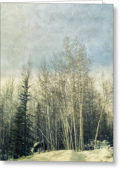 Grove Greeting Cards - Winter Grove Greeting Card by Priska Wettstein