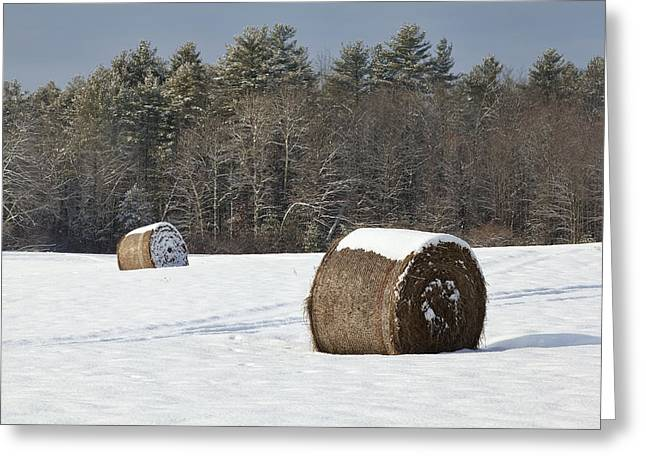 Winter Scenes Rural Scenes Greeting Cards - Winter Harvest Greeting Card by Eric Gendron