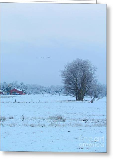 Maine Farms Greeting Cards - Winter Has Arrived Greeting Card by Elizabeth Dow