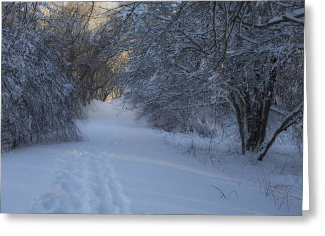 Snow-covered Landscape Greeting Cards - Winter Hike Greeting Card by Andrew Pacheco