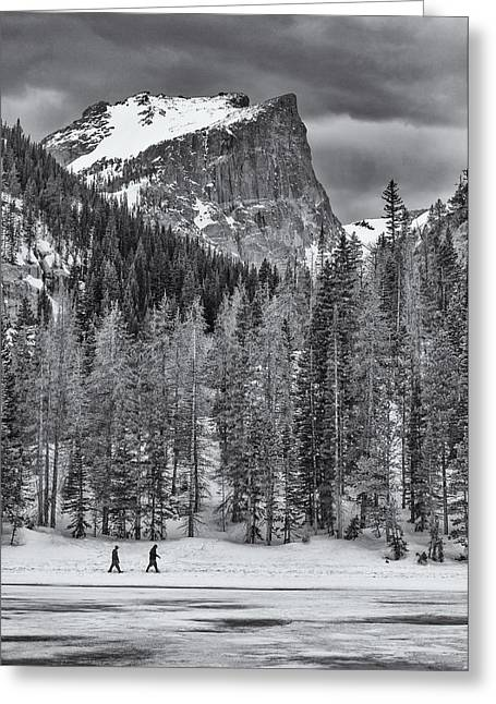 Winter Prints Greeting Cards - Winter Hike Greeting Card by Darren  White