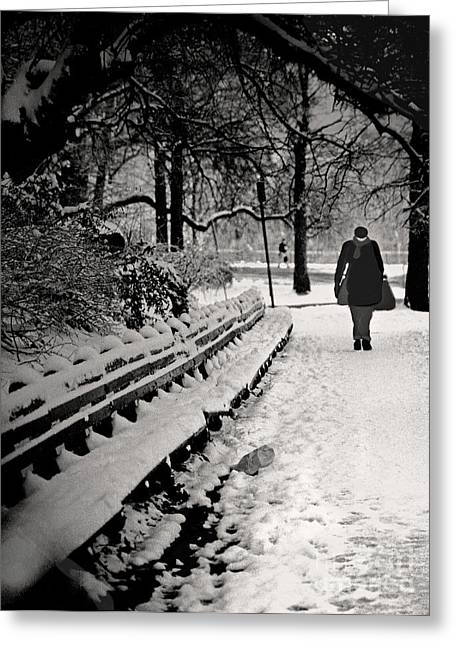 Blizzard New York Greeting Cards - Winter In Central Park Greeting Card by Madeline Ellis