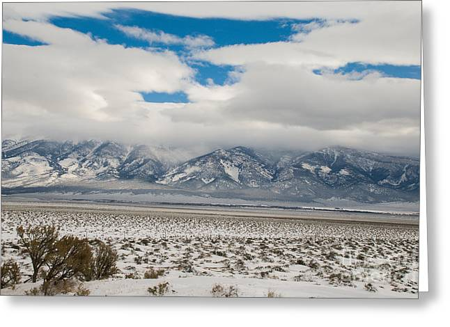 Geobob Greeting Cards - Winter in Great Basin National Park Nevada Greeting Card by Robert Ford