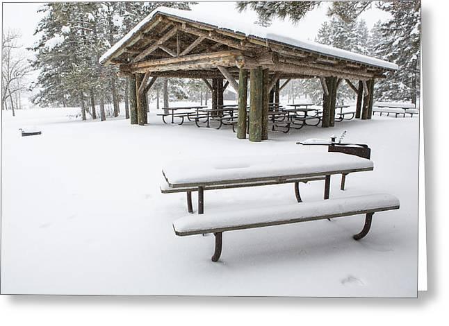Pinus Resinosa Greeting Cards - Winter in Itasca Greeting Card by Tim Grams