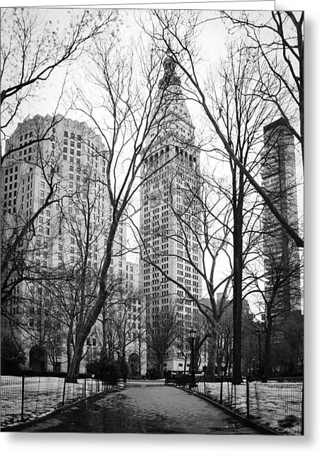 Recently Sold -  - Iron Greeting Cards - Winter in Madison Square Park - New York City Greeting Card by Erin Cadigan